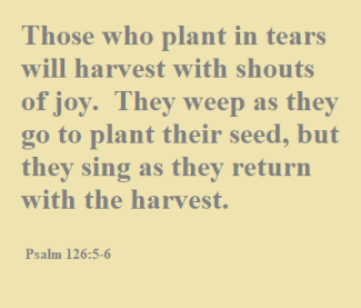 Psalm 126.5-6